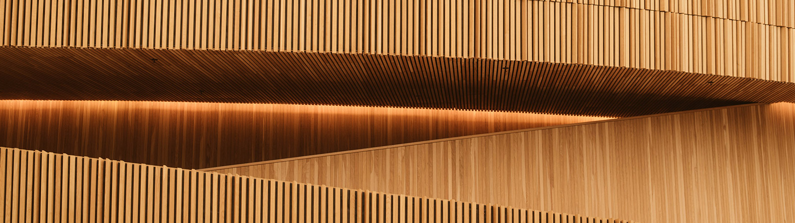 costruire casa con il legno